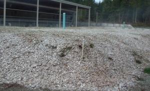Wood based biofilter media